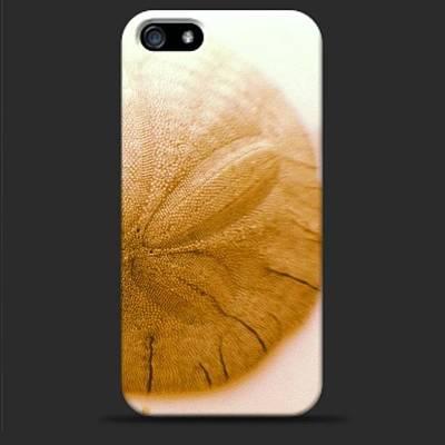 #seashell #sanddollar #iphone #case Art Print