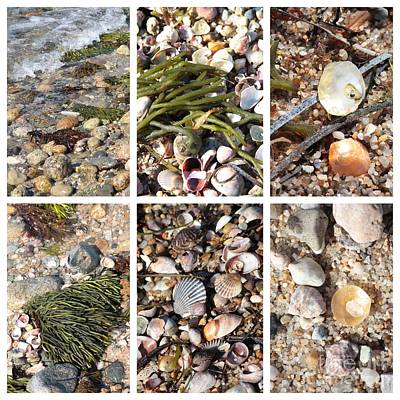 Photograph - Seashore Collage by Carol Groenen