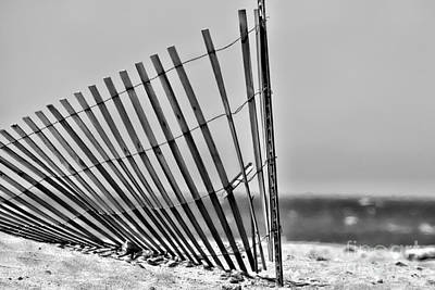 Photograph - Seaside Fencing By Diana Sainz by Diana Raquel Sainz