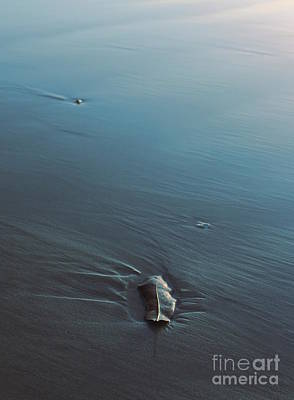 Photograph - Seaside Offering by Amanda Holmes Tzafrir