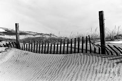 Photograph - Seaside Park Dune Mono by John Rizzuto