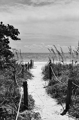 Photograph - Seaside Path by William Wetmore