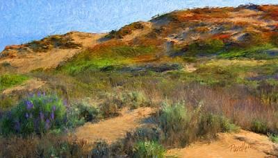 Digital Art - Seaside Sand Dune by Jim Pavelle