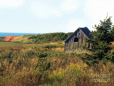 Seaside Shed - September Art Print by RC DeWinter