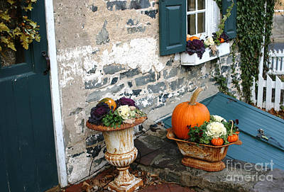 Photograph - Seasonal Entrance by Living Color Photography Lorraine Lynch