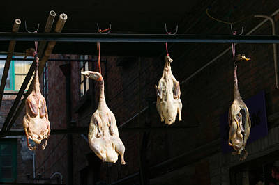 Seasoning Peking Ducks Hanging For Sale Art Print by Panoramic Images