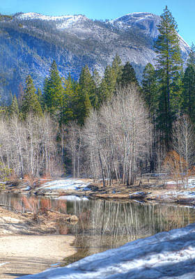 Photograph - Seasons Change by Patricia Dennis