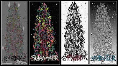 Digital Art - Seasons by EricaMaxine  Price