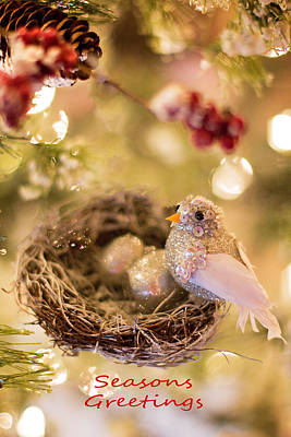 Photograph - Seasons Greetings by Deb Buchanan