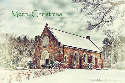 Photograph - Seasons Greetings by Tricia Marchlik