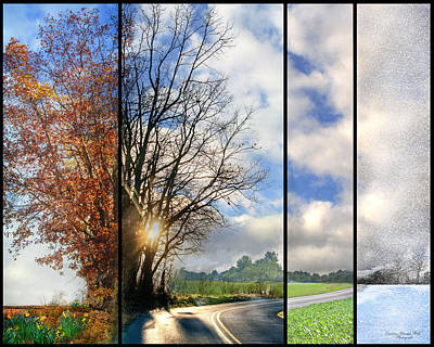 Photograph - Seasons Merge by Darlene Bell