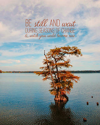 Photograph - Seasons Of Change by Jai Johnson