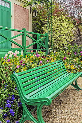 Photograph - Seat In Beauty by Elvis Vaughn