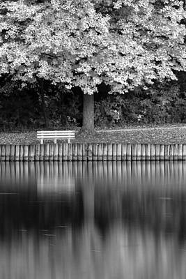 Trees And Lake Photograph - Seat In The Woods by Andrew Soundarajan