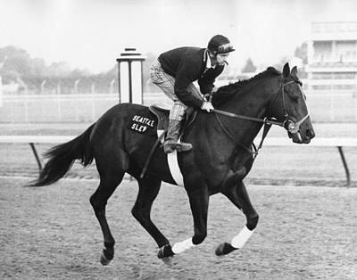 Thoroughbred Horse Photograph - Seattle Slew Horse Racing #03 by Retro Images Archive