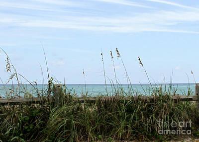 Photograph - Seaview by Sabrina L Ryan