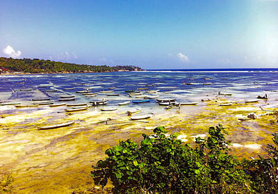 Photograph - Seaweed Farming Bali by Jo Ann