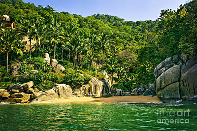 Puerto Vallarta Photograph - Secluded Beach by Elena Elisseeva