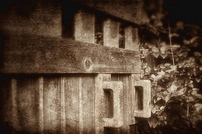 Wood Grain Photograph - Secluded Garden by Tom Mc Nemar