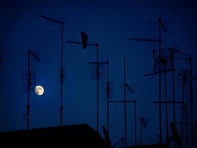 Photograph - Seclusion by Alessandro Della Pietra