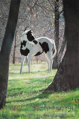 Drawing - Second Glance by Helen Bailey