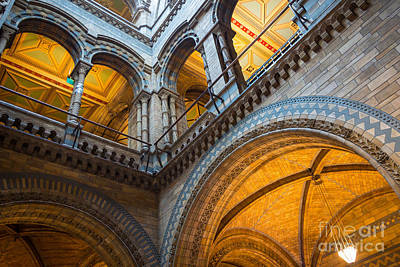 Natural History Museum London Photograph - Second Story by Inge Johnsson