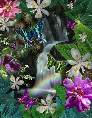 Alixandra Mullins Photograph - Secret Butterfly by Alixandra Mullins