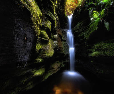 Spider Photograph - Secret Falls by Fei Shi