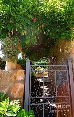 Photograph - Secret Garden Ahead by Barbie Corbett-Newmin