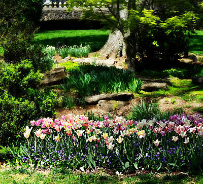 Cheekwood Photograph - Secret Garden by Ally  White