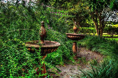 Photograph - Secret Garden Birdbath by David Morefield