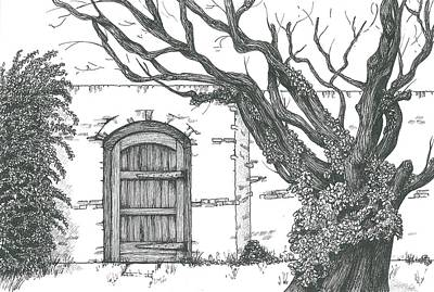 Drawing - Secret Garden by Sue Pownall