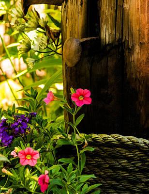 Photograph - Secret Garden Treasures by Jordan Blackstone