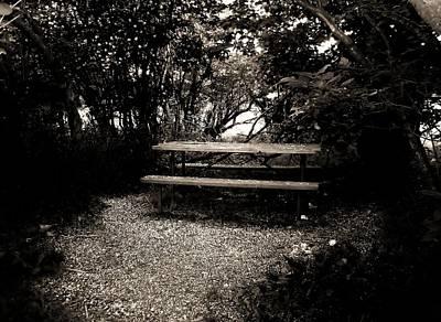 Photograph - Secret Meeting Place by Bridget Johnson