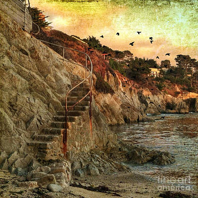 Photograph - Secret Ocean Cove by Charlene Mitchell