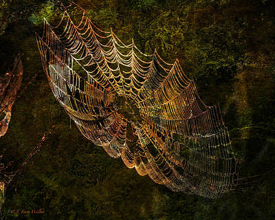 Digital Art - Secret Spider Sanctuary by J Larry Walker