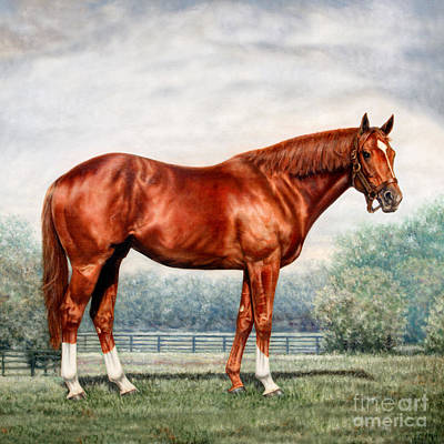 Secretariat Painting - Pillow - Secretariat by Thomas Allen Pauly
