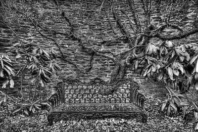 Photograph - Secrets Of The Garden Bw by Dawn J Benko
