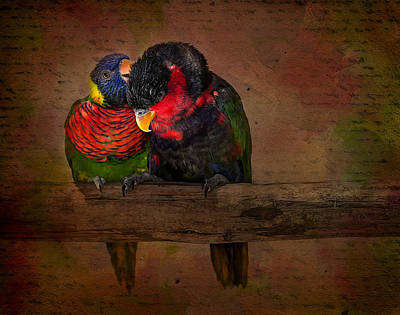 Parakeet Digital Art - Secrets by Susan Candelario