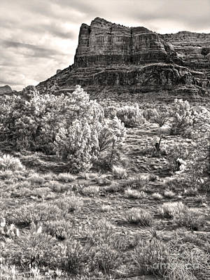 Sedona Arizona Mountain View  - Black And White Art Print by Gregory Dyer