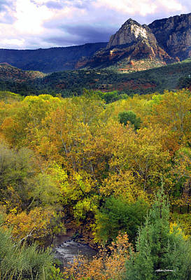 Photograph - Sedona Autumn Golds by Martin Sullivan