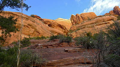 Photograph - Sedona Canyon by Denise Mazzocco