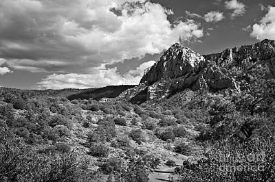 Photograph - Sedona Desert Under Cloudy Skies In Black And White by Lee Craig