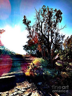 Photograph - Sedona One by Scott Shaw