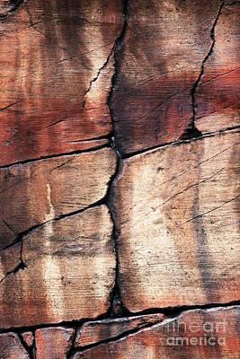Photograph - Sedona Red Rocks Iv by John Rizzuto