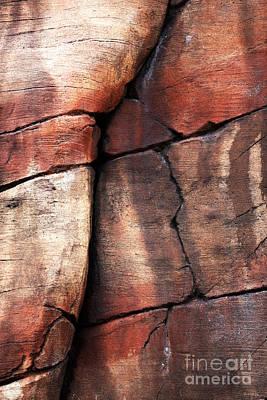 Photograph - Sedona Red Rocks Vi by John Rizzuto