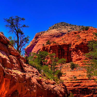 Photograph - Sedona Rock Formations V by David Patterson