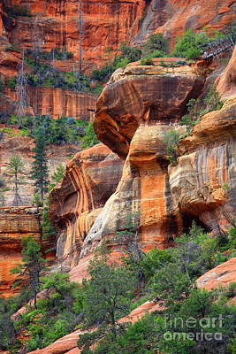 Sedona Stripes Art Print by Carol Groenen
