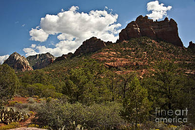 Photograph - Sedona Summer by Lee Craig