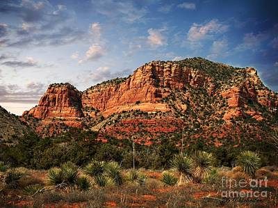 Art Print featuring the photograph Sedona Vortex  And Yucca by Barbara Chichester